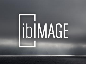 ibIMAGE / logotype